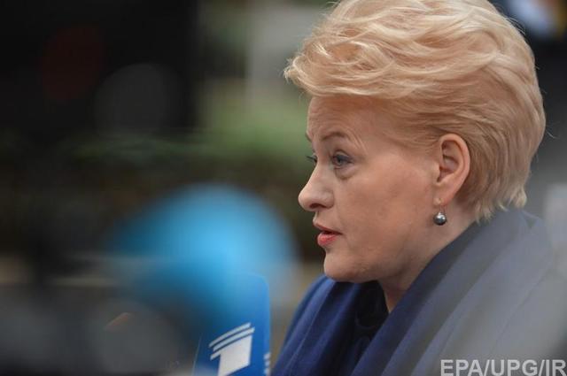 Грибаускайте заявила о секретной помощи Украине: это «государственная тайна»