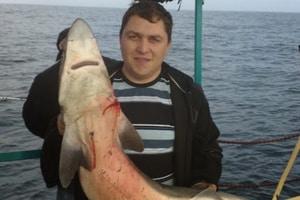 "Крушение ""Иволги"": капитан ходил на акулу и жарил на судне шашлыки"