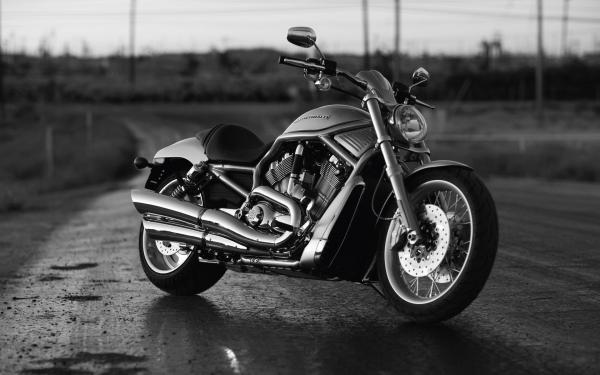 Нардепов хотят привлечь за незадекларированные Harley-Davidson и Toyota Land Cruiser