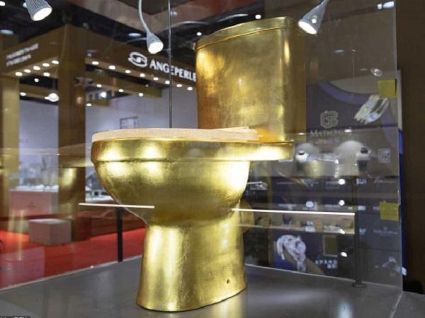 «Позолоченный трон»: в Китае продают «драгоценный» унитаз стоимостью более 1 млн долларов