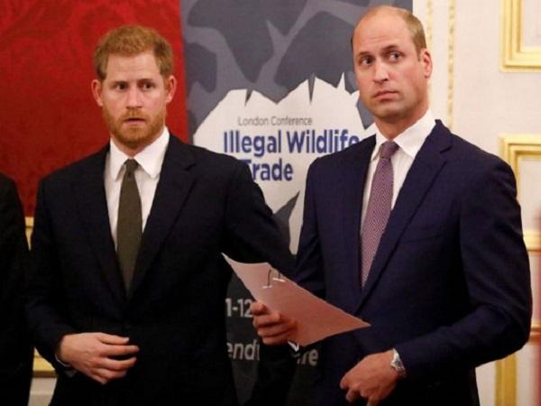 Принцы Гарри и Уильям после секретной беседы договорились о примирении