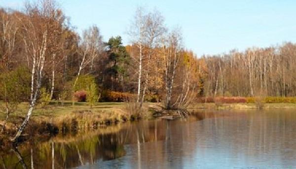 В московском парке за два дня нашли несколько частей человеческих тел