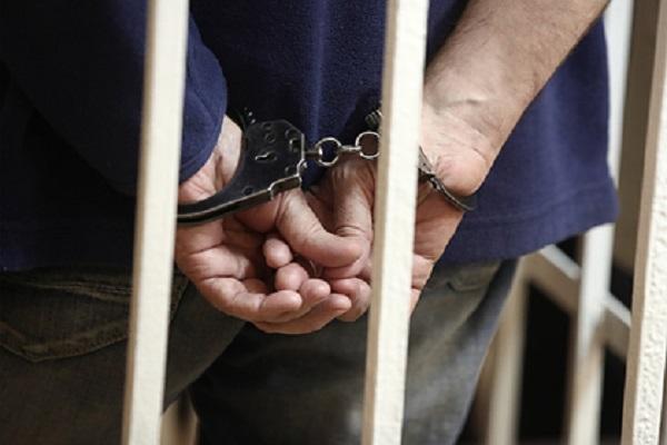 Россиянин пойдет под суд за истязание соседей конским ржанием