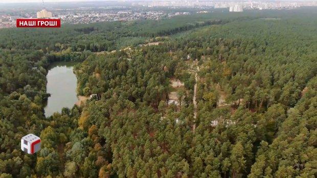 Криминальный девелопер Андрей Ваврыш получил уголовное дело: все его активы арестованы, а стройки заморожены